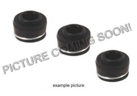 KLEPSEALS VALVE STEM SEAL SET, U060110KM