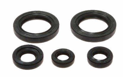 Engine Seal Kit KTM Duke 125 4T